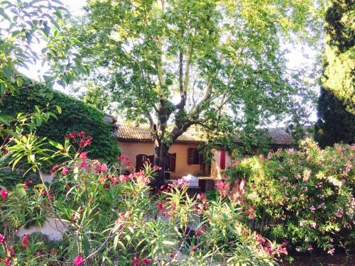 Domaine de la Guicharde : Guest accommodation near Mornas