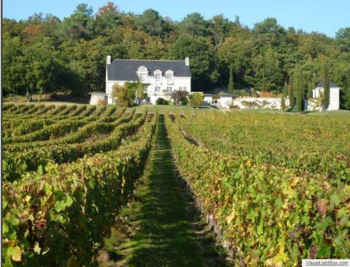 Domaine de Beauséjour : Bed and Breakfast near Chaveignes