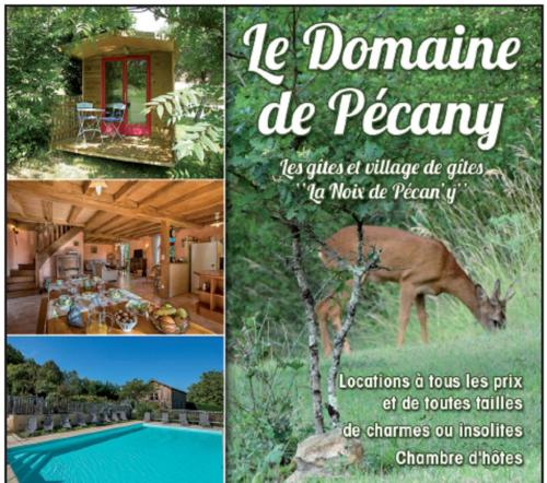 Le Domaine De Pecany : Guest accommodation near Marnac