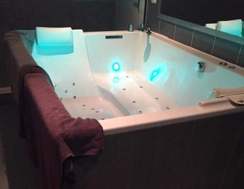 Appartement COSY avec Jacuzzi Spa Sauna Privatifs : Apartment near Lyon 8e Arrondissement