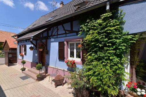 Eden des choux : Guest accommodation near Schaeffersheim
