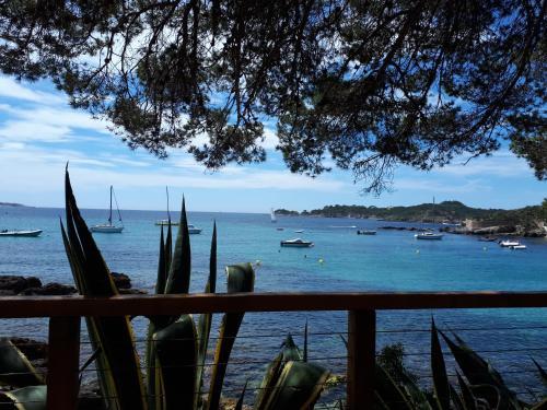 La Requinquillado : Apartment near La Crau