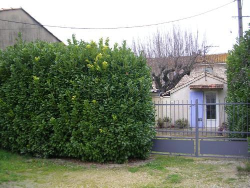 La Sarriette - Mr & Mme Marcellin : Apartment near Eygalières