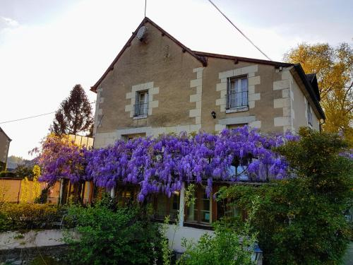 Le Moulin St Jean : Bed and Breakfast near Saint-Flovier