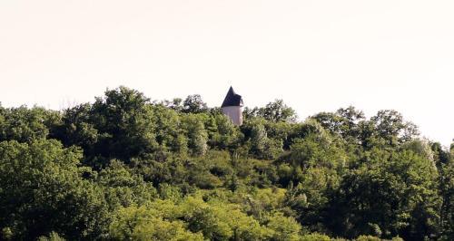 Moulin De Rouzé : Guest accommodation near Montauriol