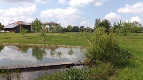 Ferienwohnung Perissee : Apartment near Blajan