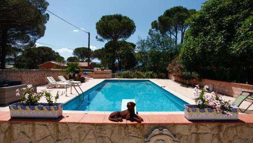 Bleu paradis : Apartment near Le Cannet-des-Maures