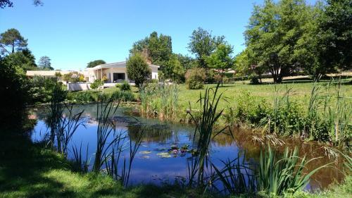 Chambres d'hôtes l'étang de l'aiguille : Guest accommodation near Seyresse
