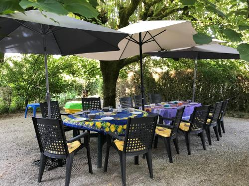 Le Ribet : Bed and Breakfast near Palleville