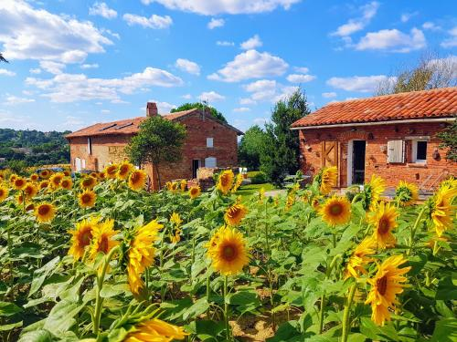 Les Hauts de Sames : Bed and Breakfast near Pins-Justaret