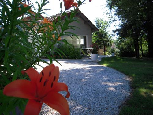 Chalet Rocamadour : Guest accommodation near Pinsac