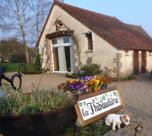 La Thibaud : Bed and Breakfast near Montabon