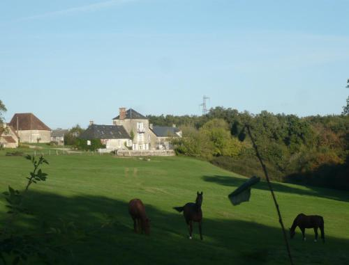 Domaine de Montgenoux : Guest accommodation near Saint-Civran