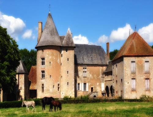 Château du Max : Bed and Breakfast near Beaune-d'Allier