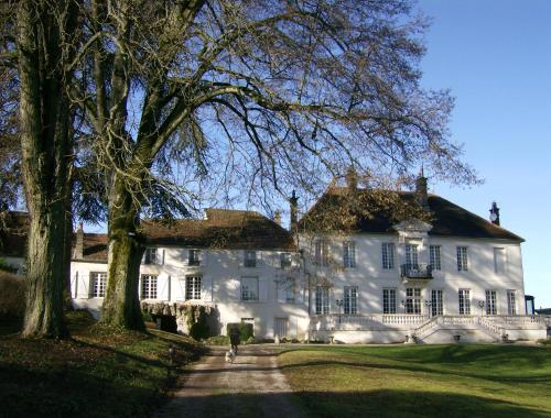 Le Chateau de Prauthoy : Bed and Breakfast near Dommarien