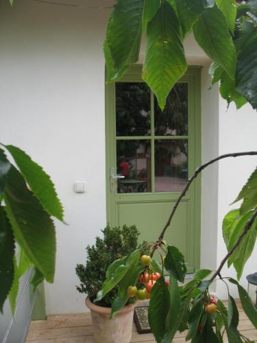 Les Glycines - Domaine Gilles Coperet : Bed and Breakfast near Thel
