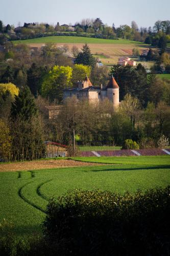 Château de Tanay B&B : Bed and Breakfast near Ars-sur-Formans