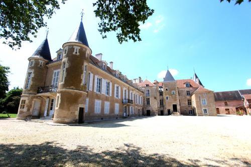 Château d'Island Vézelay : Hotel near Dissangis