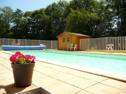 Résidence Les Terrasses : Apartment near Neuviller-la-Roche