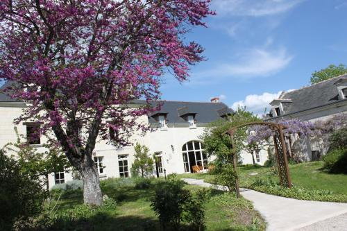La Magnanerie : Guest accommodation near Thizay