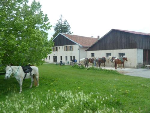 Auberge Le Sillet : Guest accommodation near Cuvier
