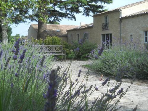 Château La Gravière : Bed and Breakfast near Ordonnac