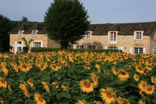 Domaine des Hirondelles : Guest accommodation near Mouzens