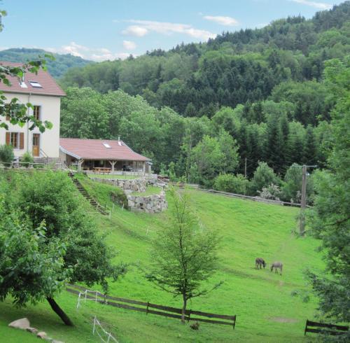 Gîtes Le Creux : Guest accommodation near Auxelles-Haut