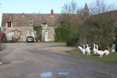 A la Ferme de la Joie - Chambres d'Hôtes : Bed and Breakfast near Villeneuve-sur-Auvers