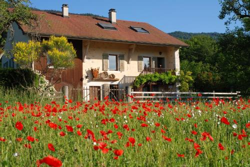 Entredigue : Guest accommodation near Divonne-les-Bains