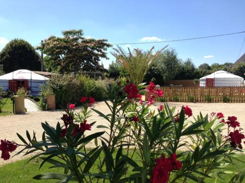 Yourte au Paradis : Guest accommodation near Saint-Martin-de-Saint-Maixent