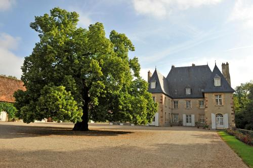 Château du Riau : Bed and Breakfast near Montilly