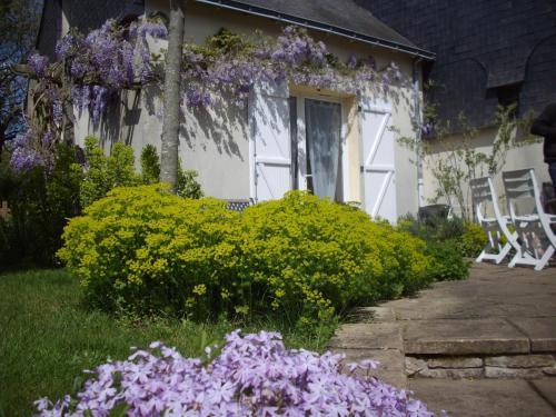 Le Nid d'Omer - Gite : Guest accommodation near Guémené-Penfao