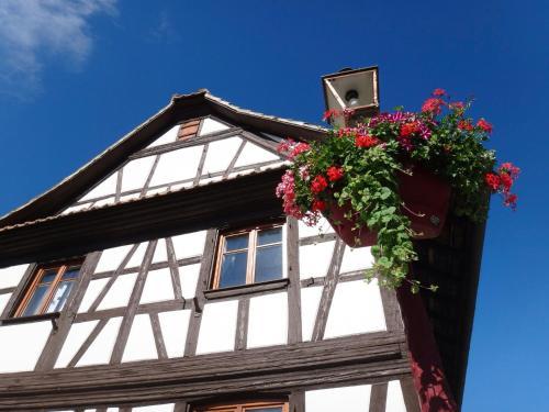 Gîte Kia Ora : Guest accommodation near Holtzheim