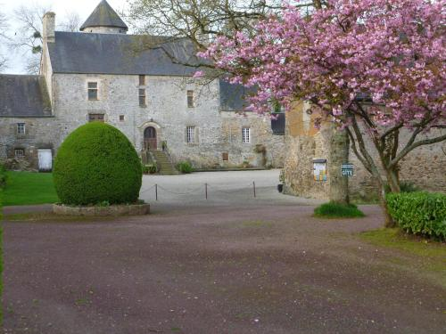 Manoir De La Foulerie : Bed and Breakfast near Lozon