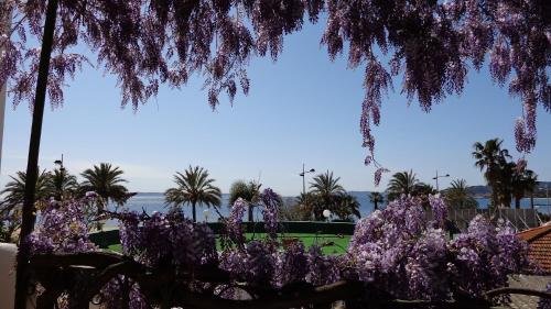 L'ilot Fleuri : Hotel near Le Lavandou