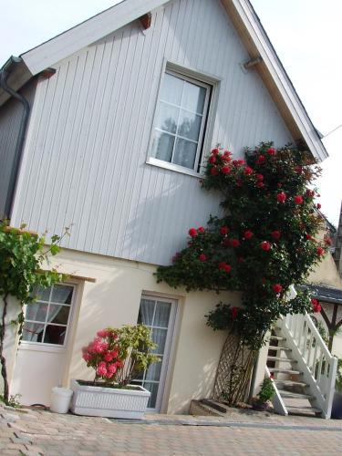 Gite les Orchidées : Apartment near Équemauville