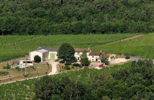 Domaine de Grand Homme : Bed and Breakfast near Naujan-et-Postiac