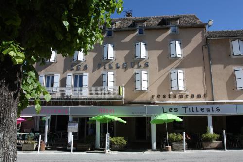 Hôtel Les Tilleuls de Pareloup : Hotel near Le Vibal