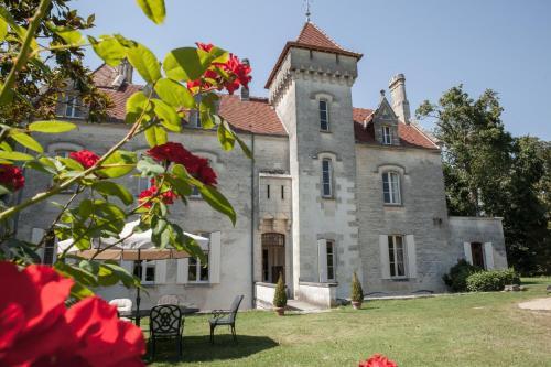 Château des Salles : Guest accommodation near Saint-Ciers-du-Taillon