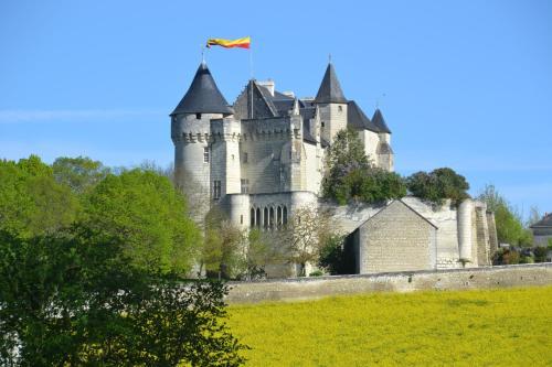 Chambres d'Hôtes Château de la Motte : Bed and Breakfast near Availles-en-Châtellerault