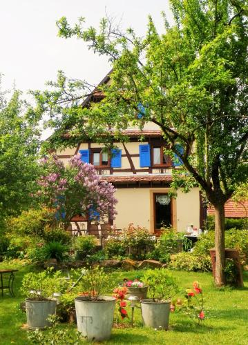 Le Jardin de l'Ill : Bed and Breakfast near Witternheim