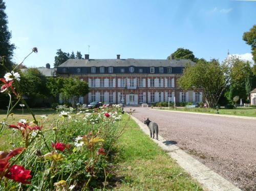 B&B Château De La Houssoye : Bed and Breakfast near Mesnil-sous-Vienne
