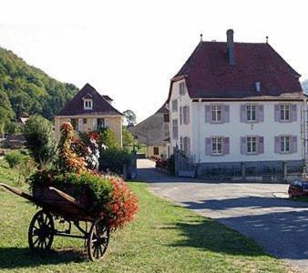 Villa Du Sendenbach : Apartment near Soultzeren