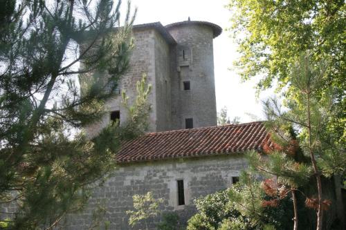 La Tour d'Avance : Guest accommodation near Lartigue