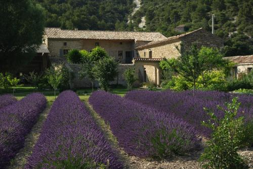 Le Mas de la Fontaine : Bed and Breakfast near Rousset-les-Vignes