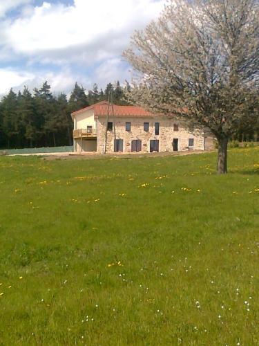 Auberge des Myrtilles : Hotel near Saint-Julien-Vocance