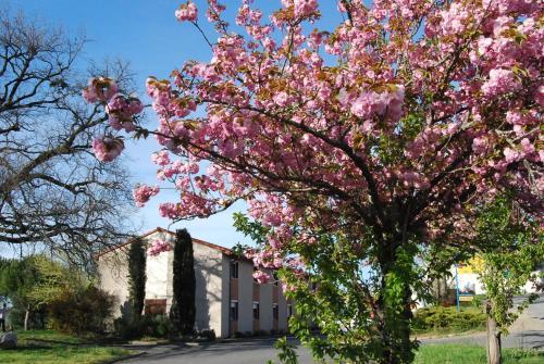 Hotel du Lac : Hotel near Brousse