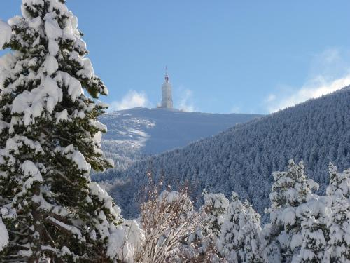 Chalet Ventoux Serein - Chambres d'hôtes : Bed and Breakfast near Brantes