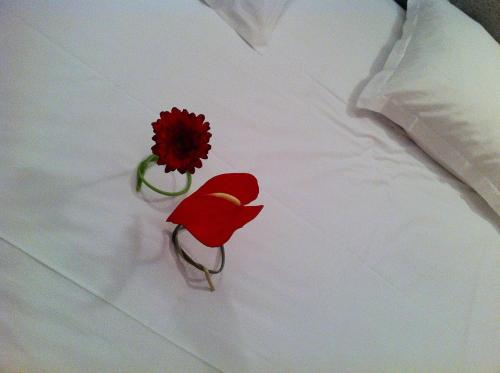Fasthotel L'Eldorado : Hotel near Rodez